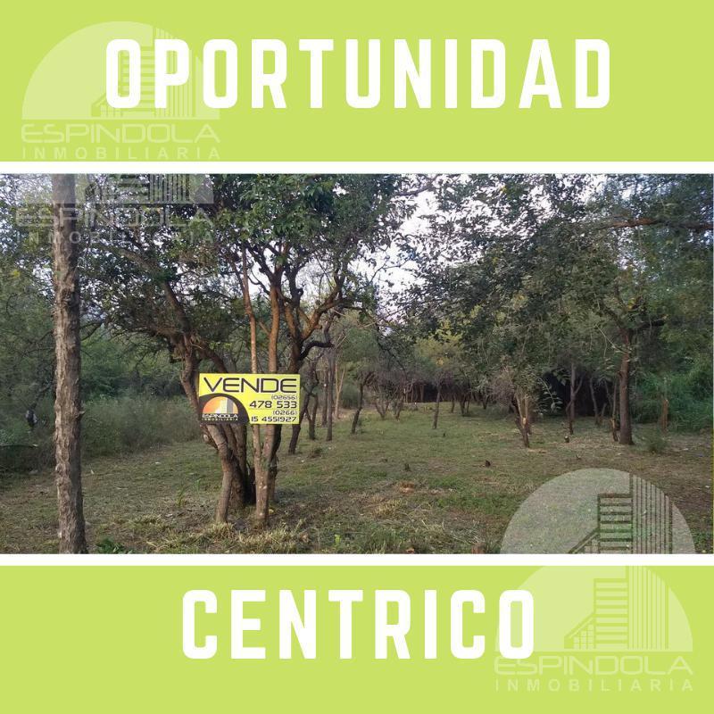 Foto Terreno en Venta en  Centro,  Merlo  pringles