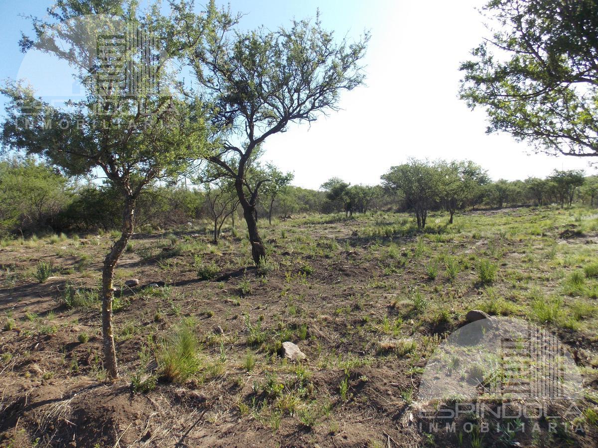 Foto Terreno en Venta en  Piedra Blanca Abajo,  Merlo  Piedra Blanca