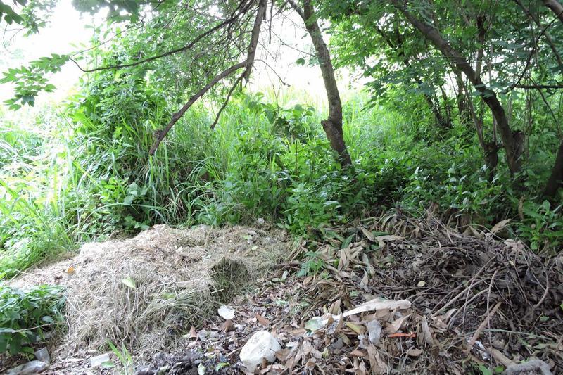 Foto Terreno en Venta en  Centro,  Yautepec  Venta de terreno plano, Centro de Yautepec, Morelos...Clave 2125