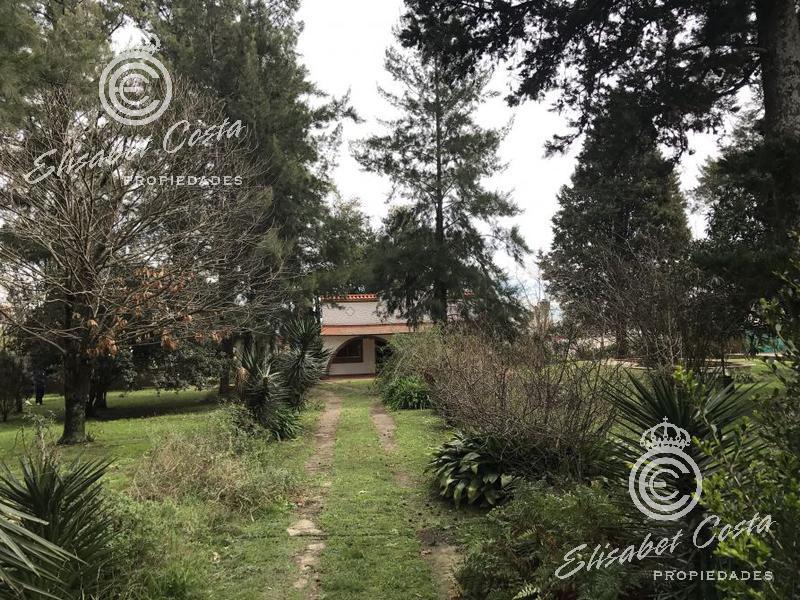 Foto Quinta en Venta en  Carlos Spegazzini,  Ezeiza  Santa Fe ( ACTUALMENTE HORNOS) entre Bouchard y Rosales
