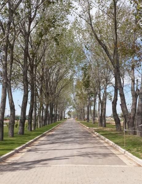 Foto Terreno en Venta en  Canning,  Ezeiza  Caceres Esquina Ruta 58