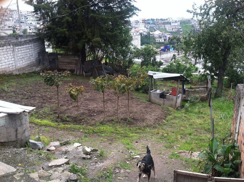 Foto Terreno en Venta en  Sur de Quito,  Quito  Propiedad en Venta 542m2 NEGOCIABLES!! (Sector La Argelia)