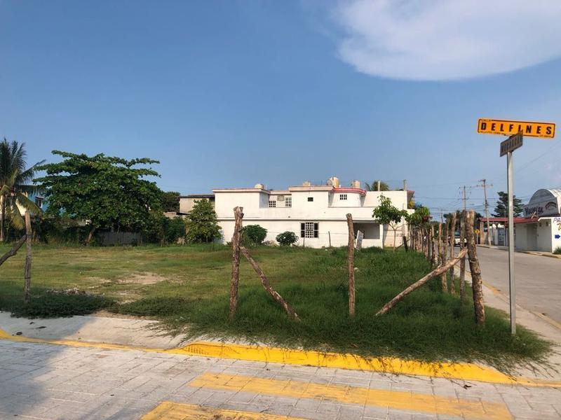 Foto Terreno en Venta en  Ejido Carrizal Puerto Ceiba,  Paraíso  Terreno en Venta en Puerto Ceiba, Paraíso Tabasco