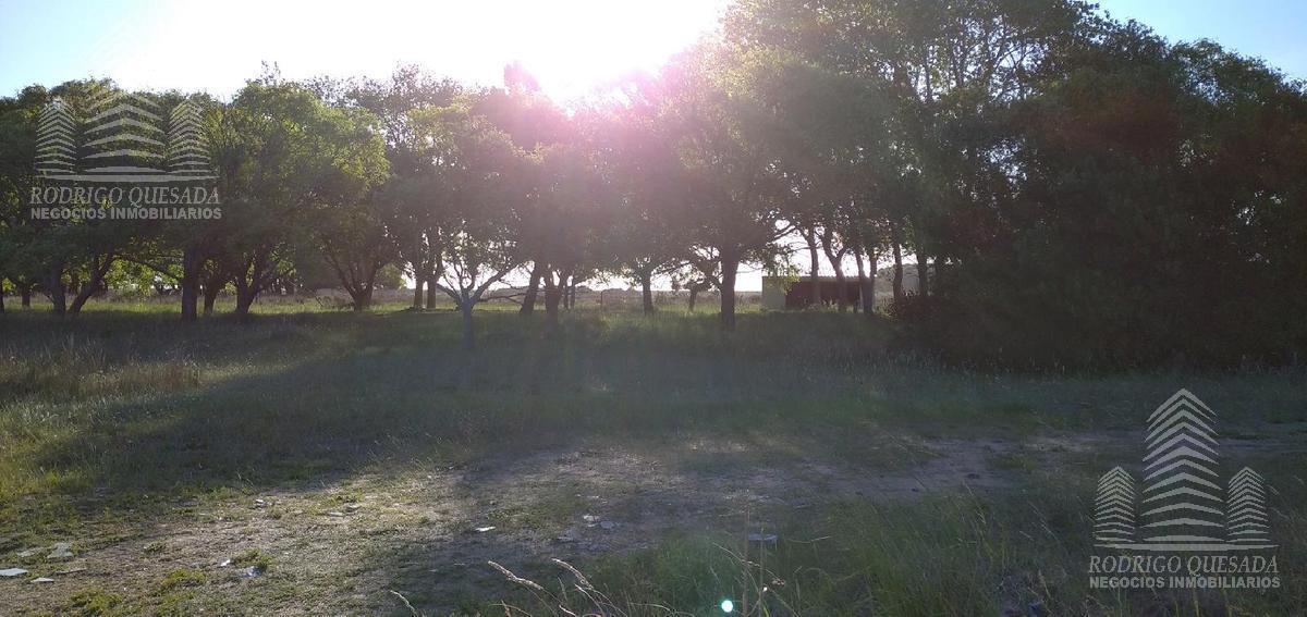 Foto Terreno en Venta en  Las Toninas ,  Costa Atlantica  Terreno - Excelente ubicación!!!