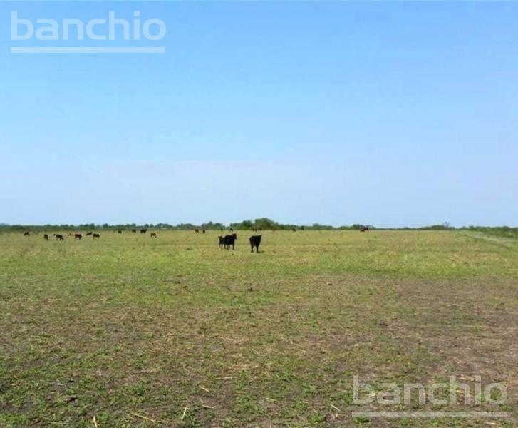 3200 ha Mixtas Malbrán, Malbran, Santiago Del Estero. Venta de División campos - Banchio Propiedades. Inmobiliaria en Rosario