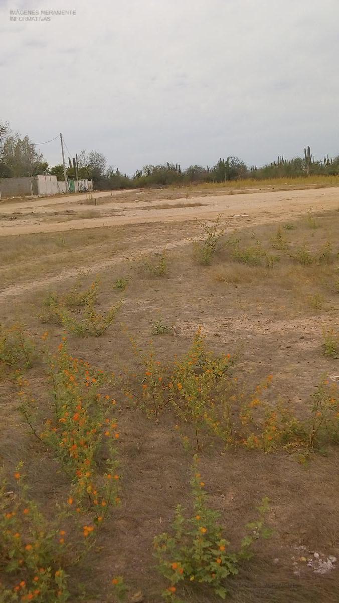 Foto Terreno en Venta en  Chametla,  La Paz  terreno parque industrial II