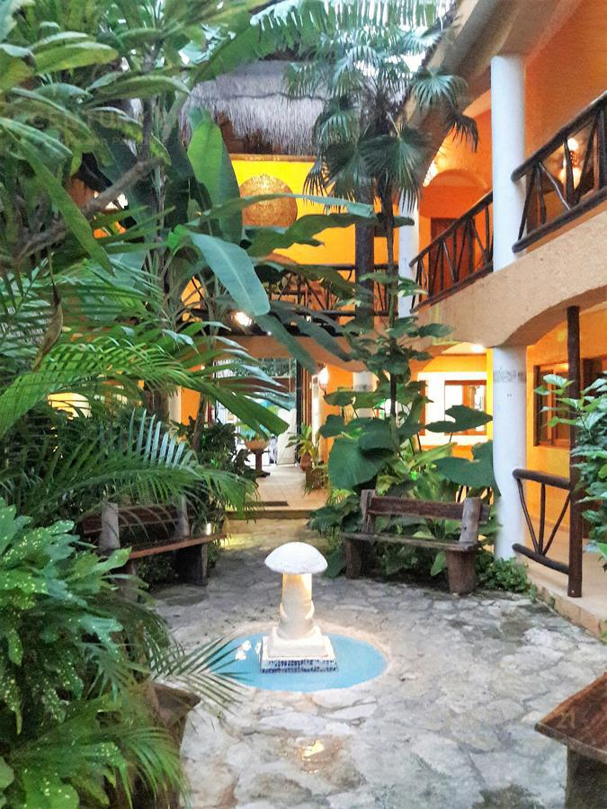 Solidaridad Hotel for Venta scene image 11