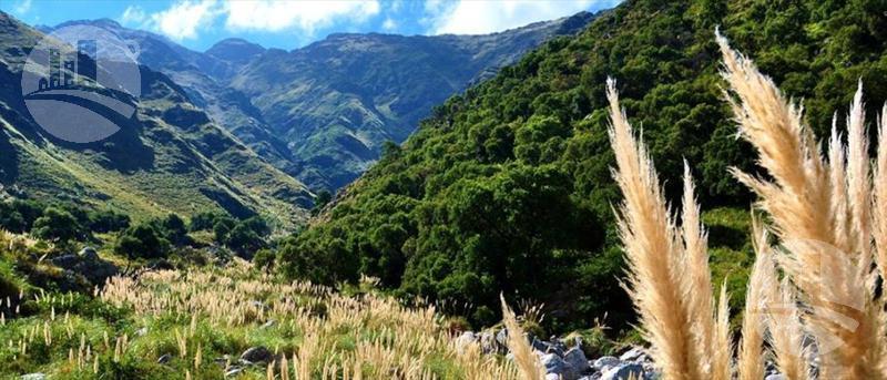 Foto Terreno en Venta en  Carpinteria,  Merlo  ruta provincial N °1 Km 10