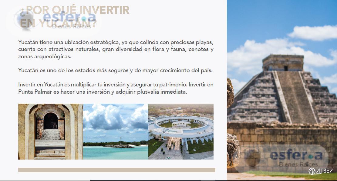 Foto Terreno en Venta en  Pueblo Sierra Papacal,  Mérida  Terrenos de inversión en Merida. Chlemen Punta Palmar
