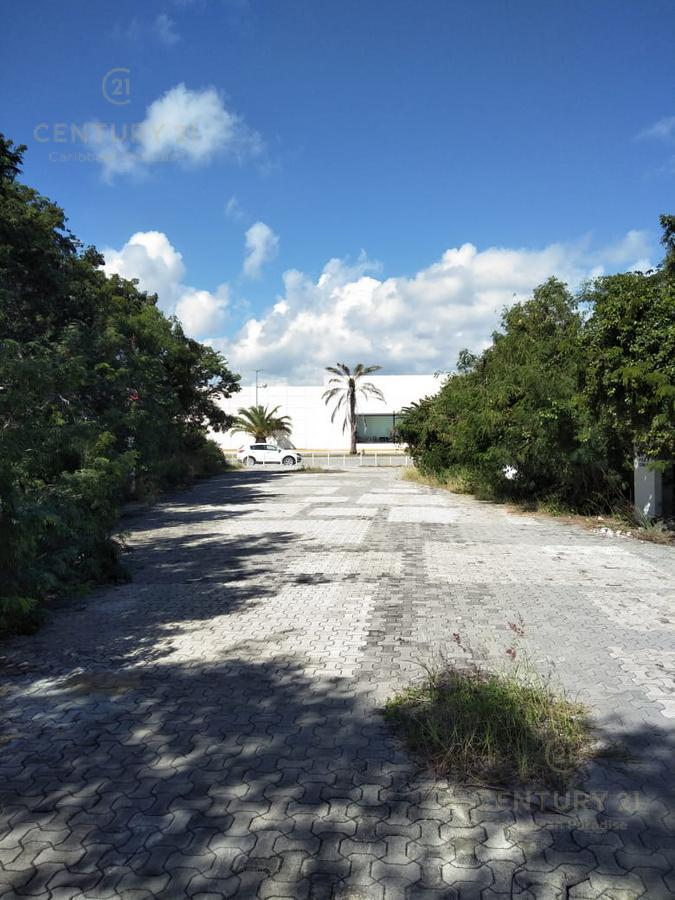 Playa del Carmen Land for Sale scene image 6