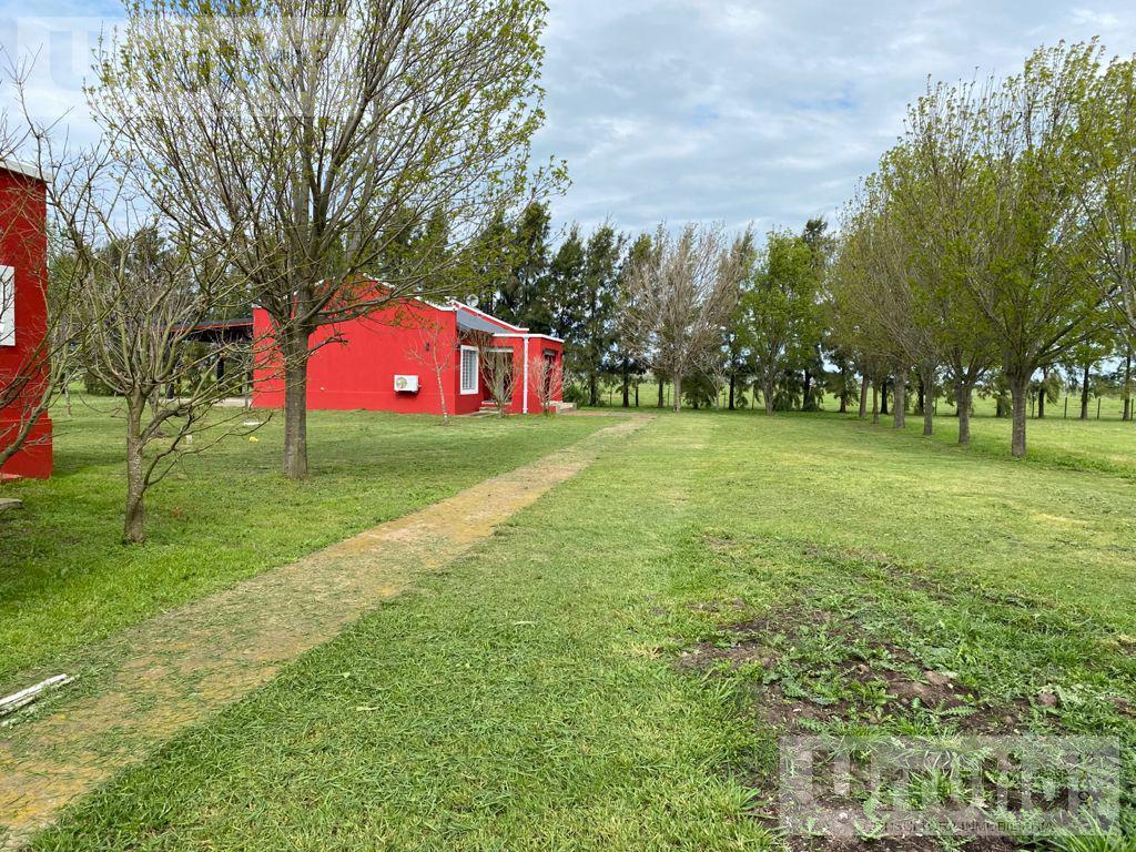 Foto Campo en Venta en  General Rodriguez ,  G.B.A. Zona Oeste  Ruta 6, Rodriguez