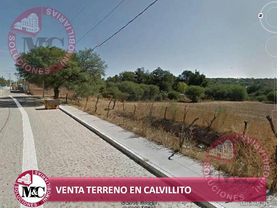Foto Terreno en Venta en  Ejido Cieneguilla,  Aguascalientes  MC VENTA HECTÁREA EN CALVILLITO