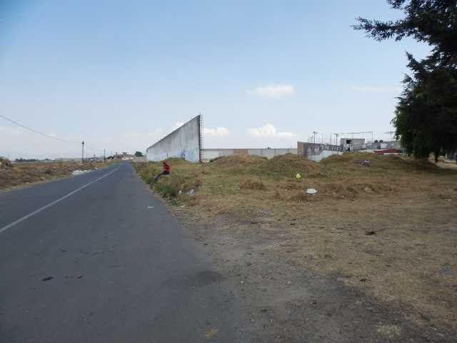 Foto Terreno en Venta   Renta en  Pueblo Tecolutla,  Tecolutla  TERRENO VTA/RTA EN PALMILLAS