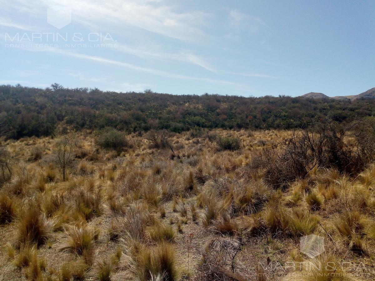Foto Terreno en Venta en  La Cumbre,  Punilla  Ruta 38 Km 72, La Cumbre
