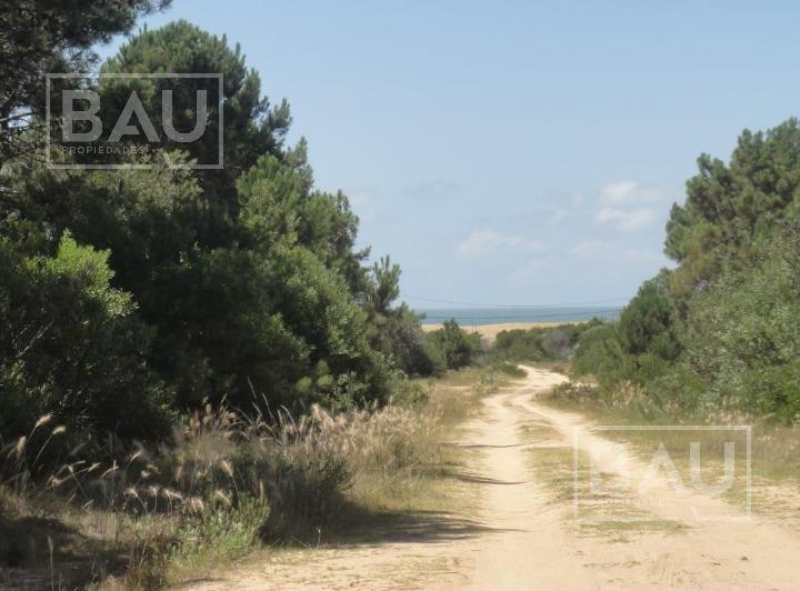 Foto Terreno en Venta en  Cabo Polonio ,  Rocha  Oceanía del Polonio,