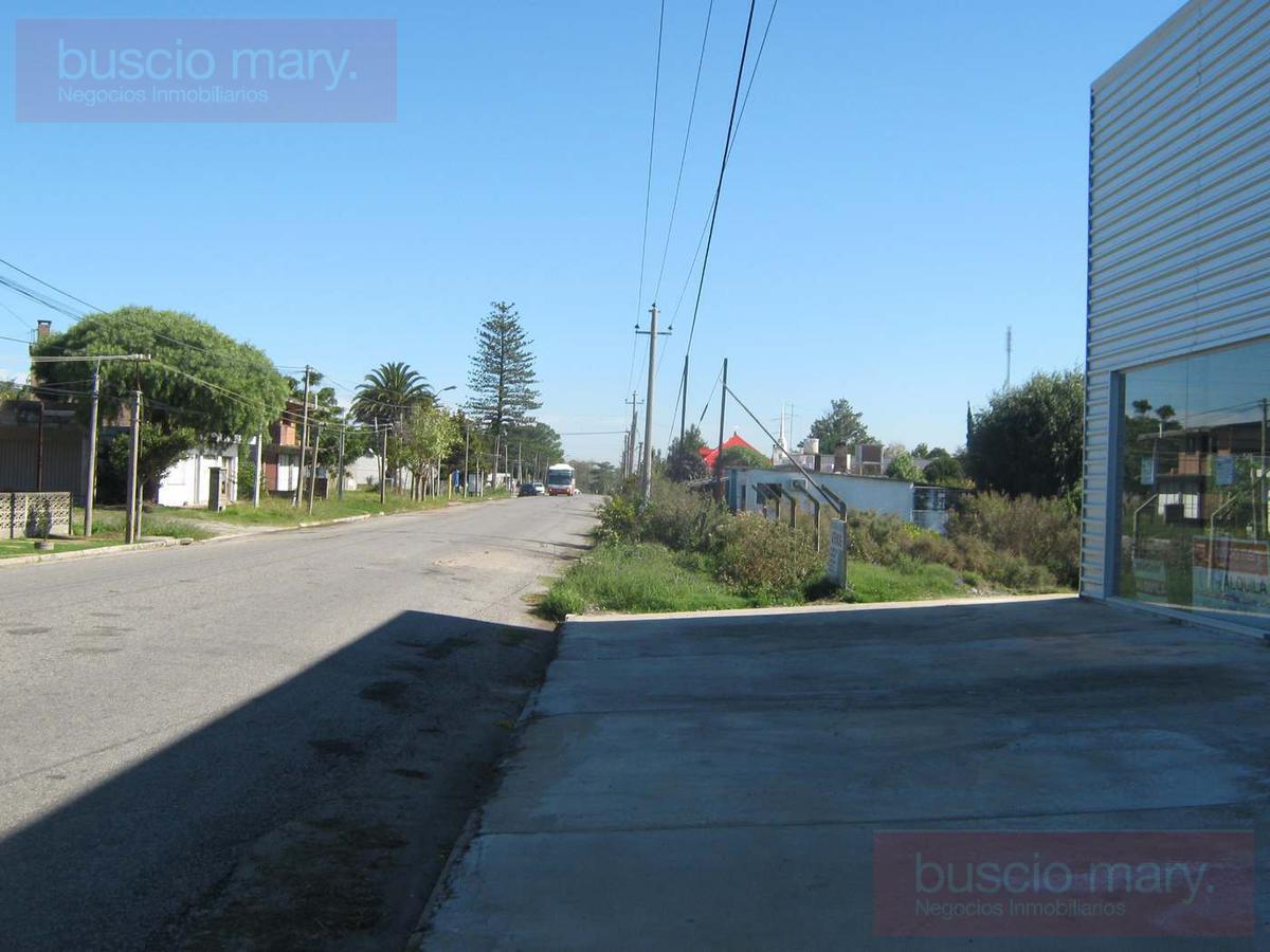 Foto Local en Venta | Alquiler en  Colonia del Sacramento ,  Colonia  Colonia del Sacramento