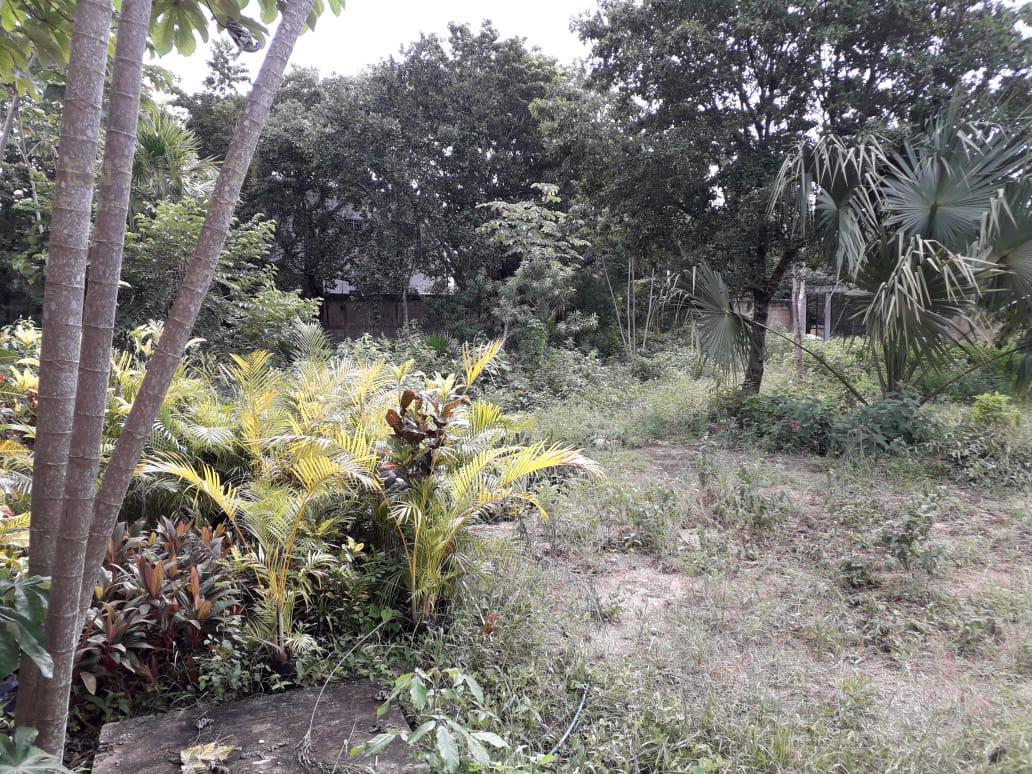 Benito Juárez Land for Sale scene image 19