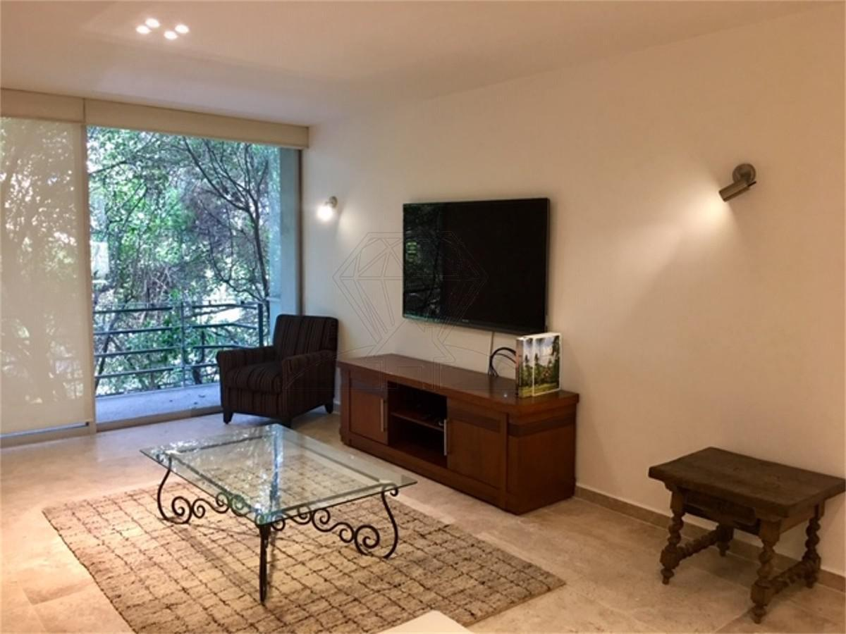 Foto Departamento en Renta en  Roma,  Cuauhtémoc  Renta departamento calle  Acapulco con TERRAZA , C/S muebles , Col. Roma (GR)