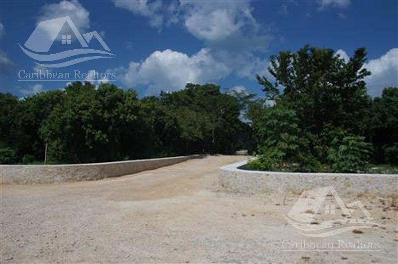 Foto Terreno en Venta en  Tulum ,  Quintana Roo  Terreno en venta en Tulum