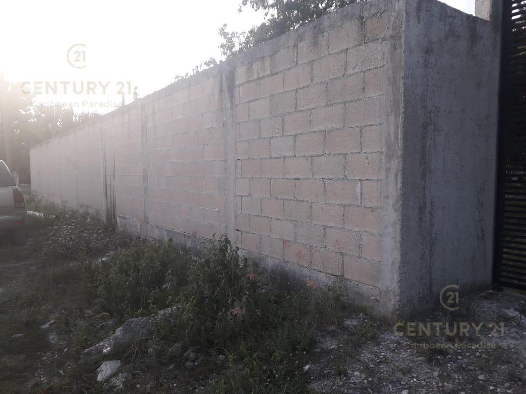 Benito Juárez Land for Sale scene image 8