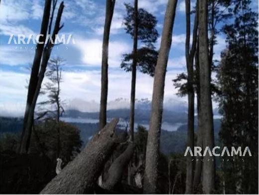 Foto Terreno en Venta en  Villa La Angostura ,  Neuquen  Bvd. Nahuel Huapi 50