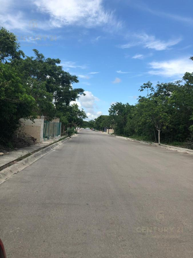 Playa del Carmen Land for Sale scene image 10