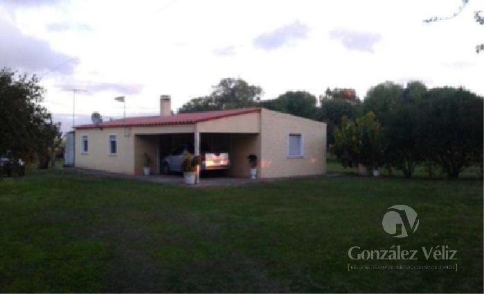 Foto Campo en Venta en  Campana ,  Colonia  Campana - Paso Arena