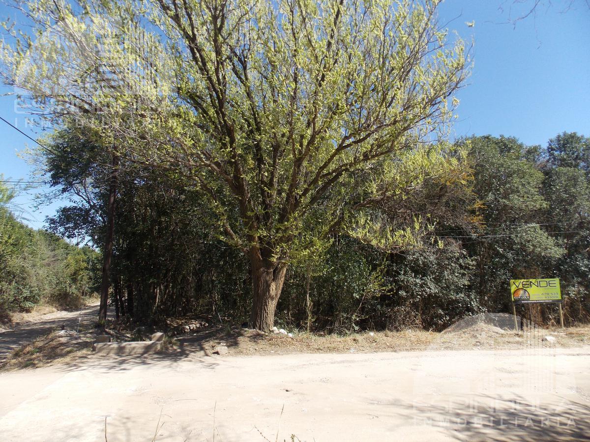 Foto Terreno en Venta en  Piedra Blanca Abajo,  Merlo   Piedra Blanca- Merlo