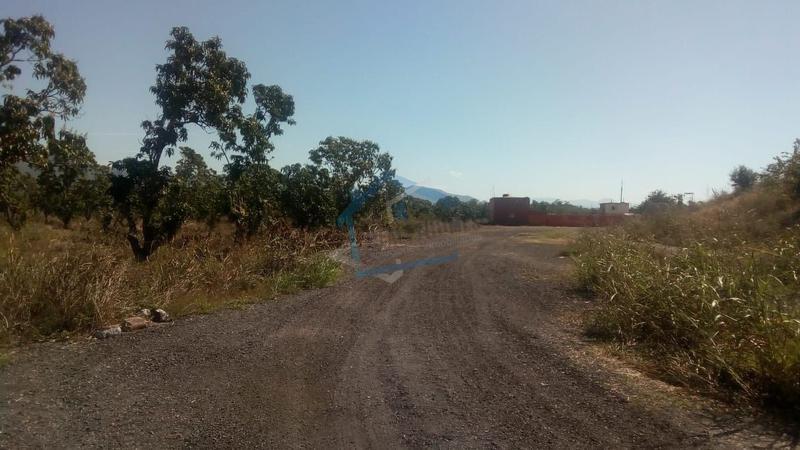 Foto Terreno en Venta en  Escuinapa Centro,  Escuinapa  Terreno en Venta en Escuinapa