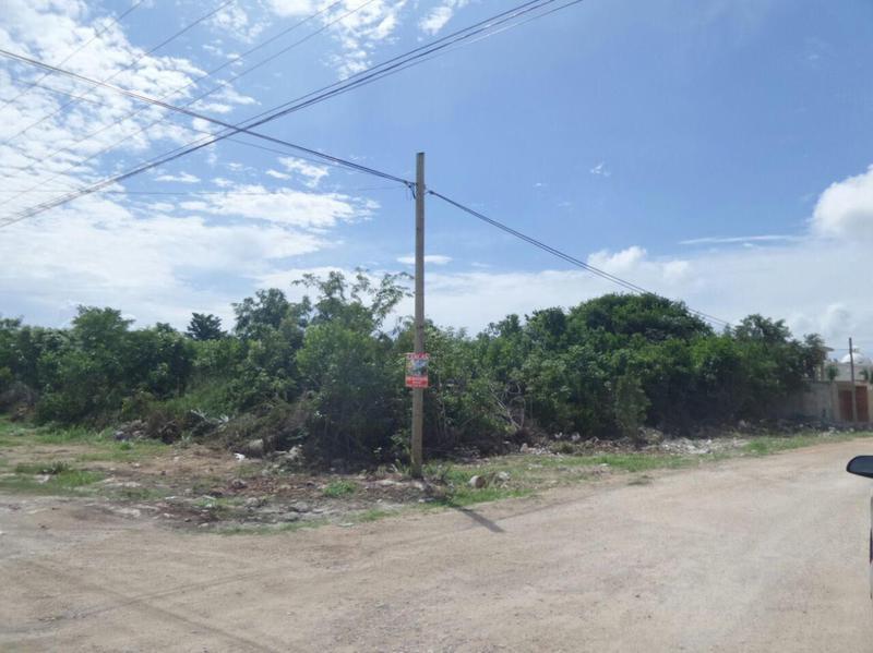 Foto Terreno en Venta en  Alamos II,  Pinamar  Excelente terreno para inversionistas entero o fraccionado!  LG C2074