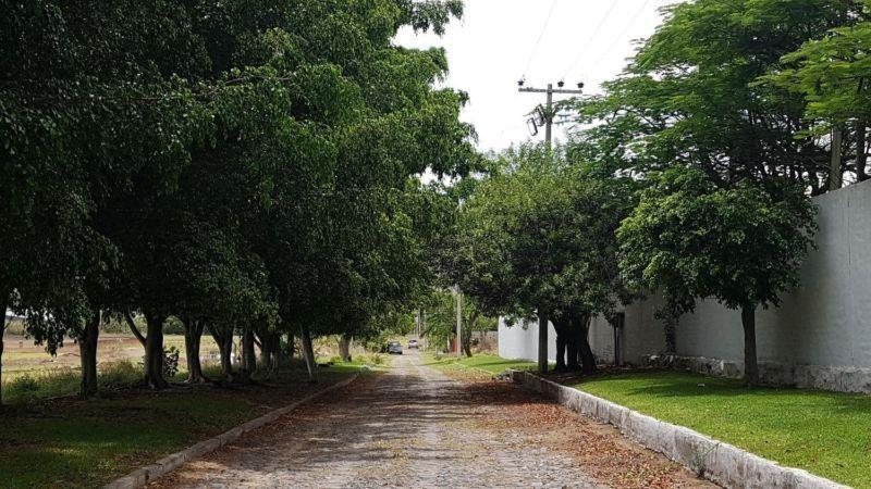 Foto Terreno en Venta en  Copalita,  Zapopan  Terreno Campestre Venta El Martel $4,902,561 Jescer E1