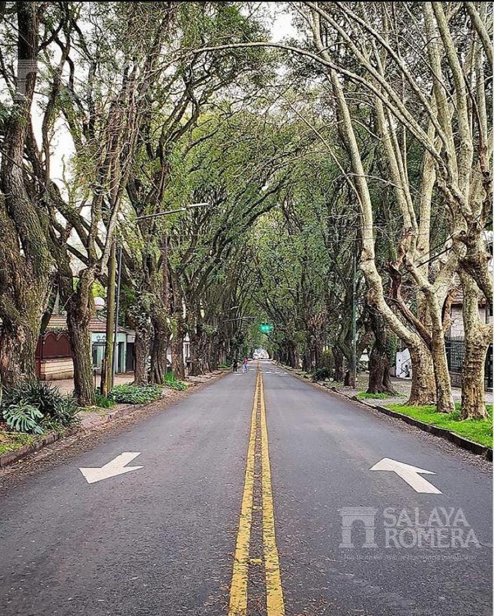 Foto Departamento en Alquiler en  Olivos,  Vicente Lopez  Alberdi entre Rawson y Rosales