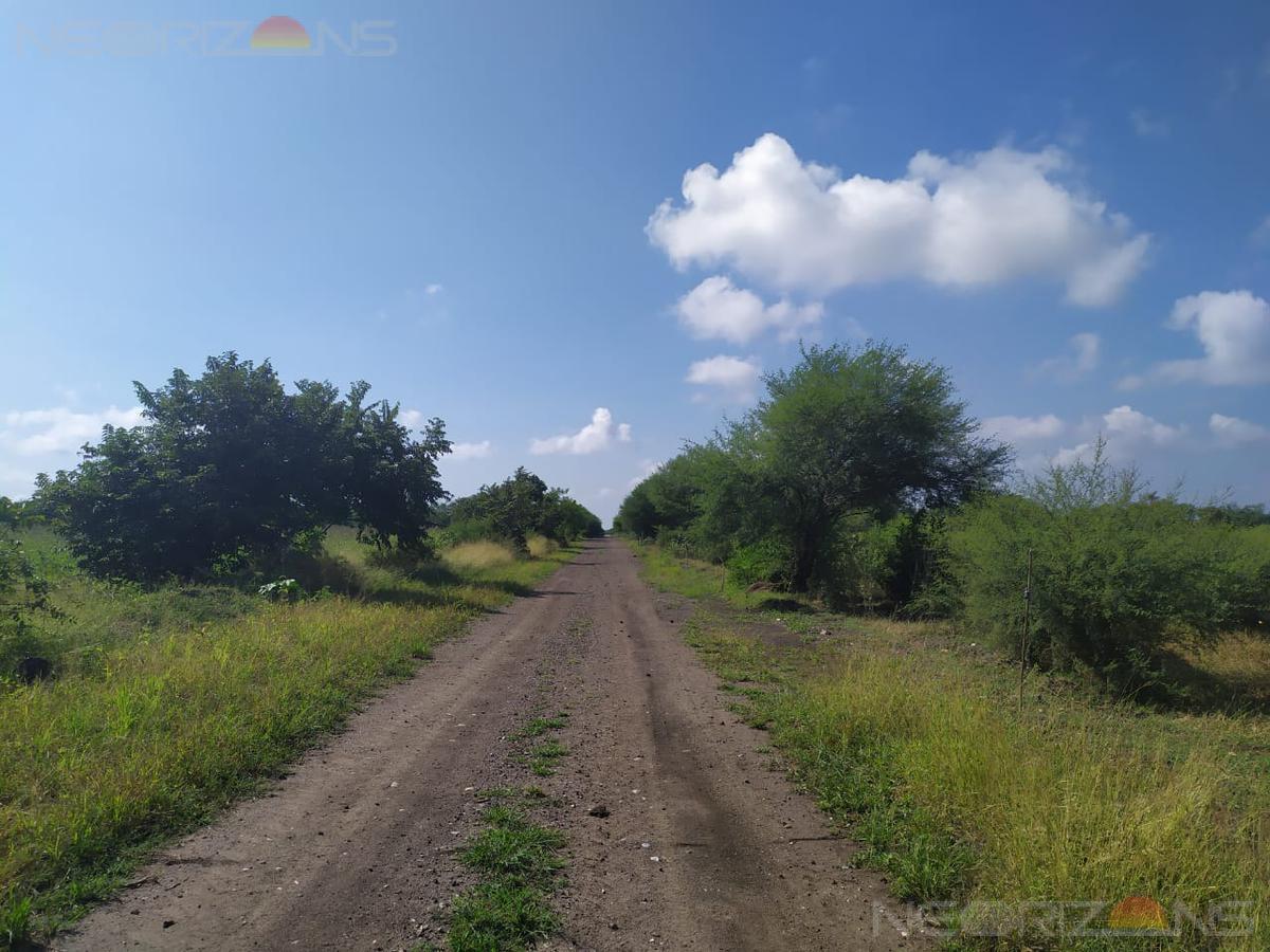 Foto Terreno en Venta en  Altamira,  Altamira  Venta de Terreno de mas de 11 Has. con frente a vía en Col. Villa de Altamira