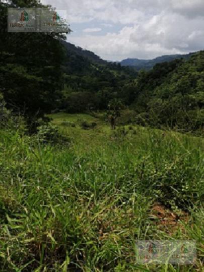 Foto Terreno en Venta en  Jaco,  Garabito  Jacó