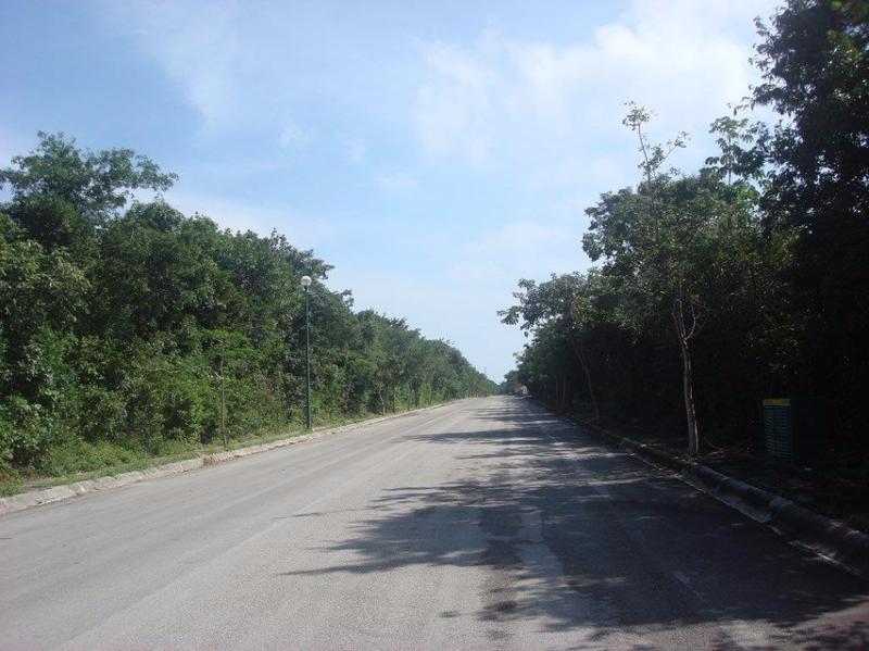 Foto Terreno en Venta en  Playa del Carmen ,  Quintana Roo  Oportunidad!! Terreno en venta en ARRECIFES en Playa del Carmen P1540