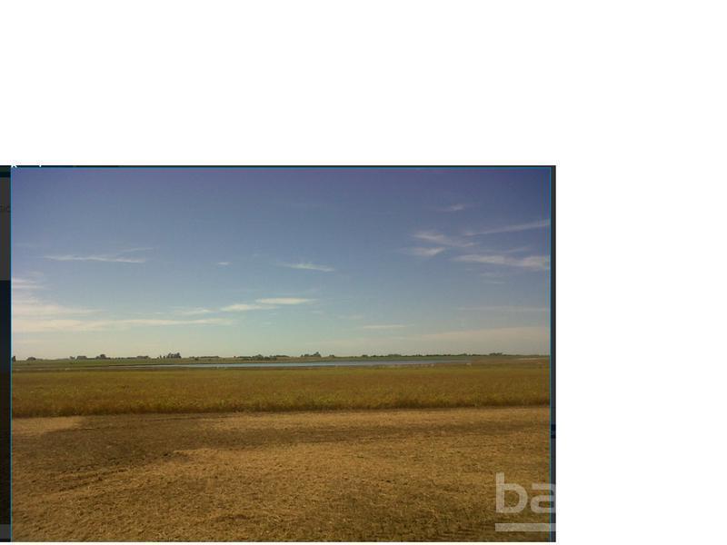 600 HA MIXTAS FIRMAT, Berabevu, Santa Fe. Venta de División campos - Banchio Propiedades. Inmobiliaria en Rosario