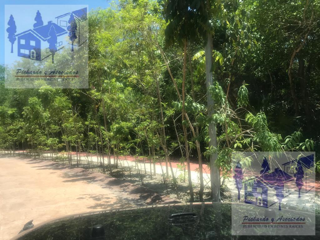 Foto Departamento en Venta en  Solidaridad ,  Quintana Roo  Ciudad Mayakoba