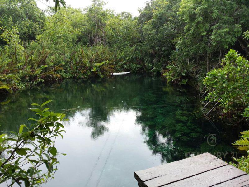 Tulum Land for Sale scene image 13