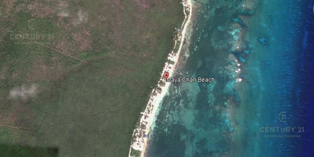 Foto Terreno en Venta en  Othón P. Blanco ,  Quintana Roo  Terreno en el kilometro 6.5 del camino costero de mahahual - xcalak C2709