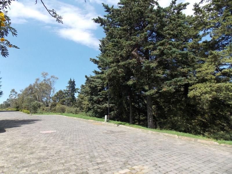 Foto Terreno en Venta en  Club de Golf los Encinos,  Lerma  TERRENO HABITACIONAL EN VENTA LOS ENCINOS