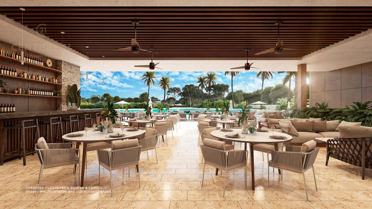 Quintana Roo Terreno for Venta scene image 8
