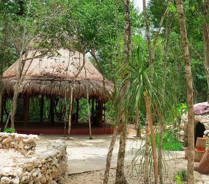 Tulum Land for Sale scene image 9