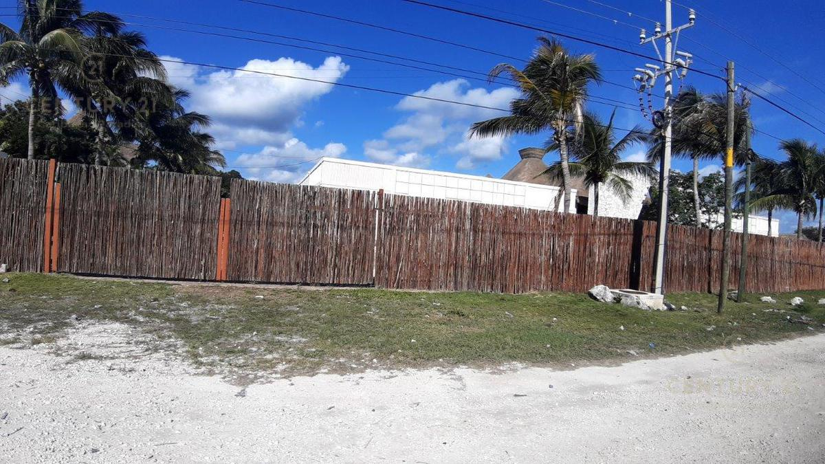 Tulum Bussiness Premises for Sale scene image 22