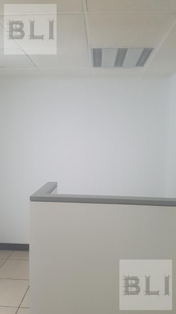 Foto Oficina en  en  Anzures,  Miguel Hidalgo  Miguel Hidalgo, Anzures, Mariano Escobedo