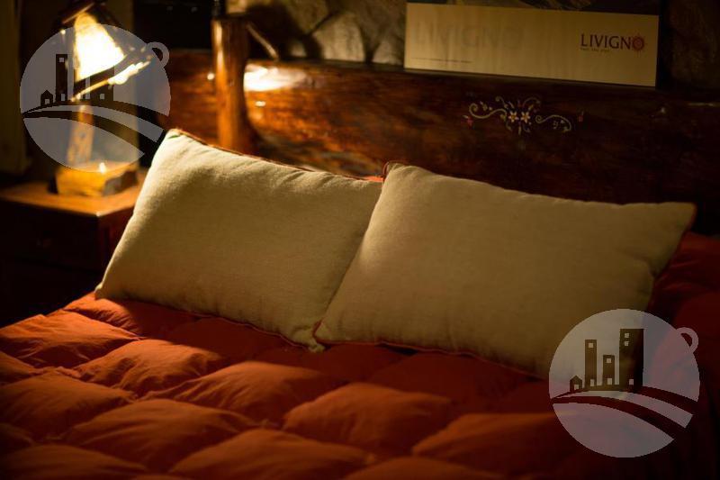 Foto Hotel en Venta en  Los Molles,  Malargue  CONFIDENCIAL