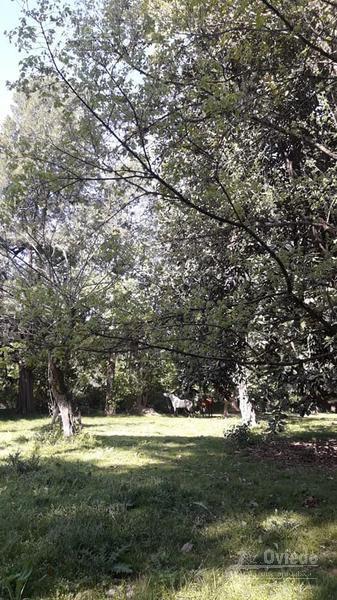 Foto Quinta en Venta en  Trujui,  Moreno  General Pinto y Florencio Sánchez
