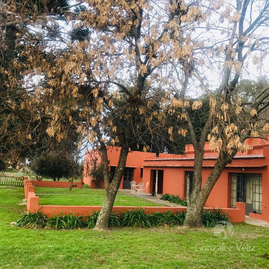 Foto Chacra en Venta en  Carmelo ,  Colonia  Chacra en Colonia Estrella - ruta 97