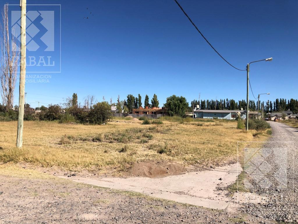 Foto Terreno en Venta en  Valentina Norte Rural,  Capital  Castelli y Estévez