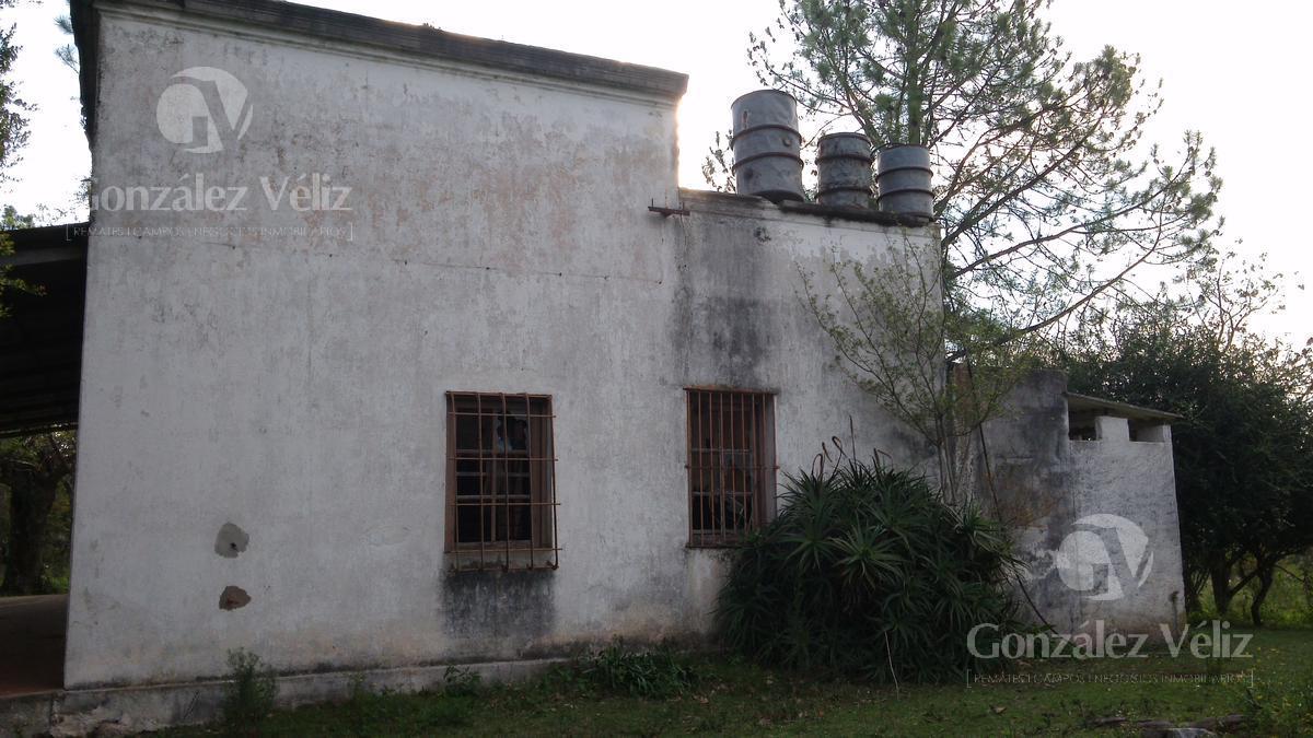 Foto Terreno en Venta en  Carmelo ,  Colonia  Ignacio Barrios - Barrio el Complejo
