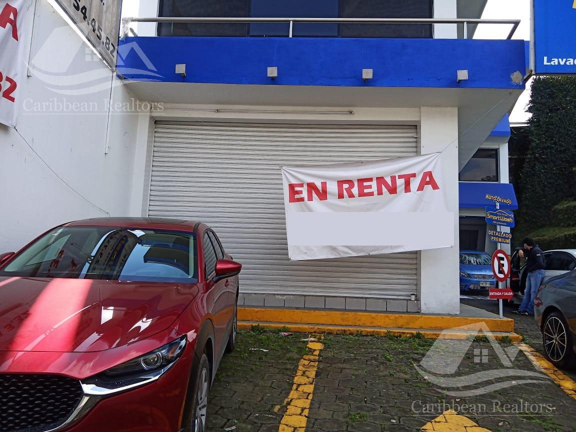 Picture Bussiness Premises in Rent in  Xalapa ,  Veracruz  Xalapa